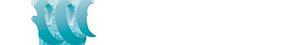 Swirltex-Logo Transparent2